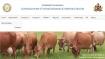 AHVS Recruitment 2021: ಪಶುಪಾಲನಾ ಮತ್ತು ಪಶುವೈದ್ಯಕೀಯ ಸೇವಾ ಇಲಾಖೆಯಲ್ಲಿ 115 ಹುದ್ದೆಗಳಿಗೆ ಅರ್ಜಿ ಆಹ್ವಾನ