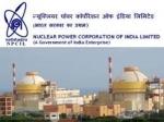 NPCIL Recruitment 2021 : 173 ಟ್ರೇಡ್ ಅಪ್ರೆಂಟಿಸ್ ಹುದ್ದೆಗಳಿಗೆ ಅರ್ಜಿ ಆಹ್ವಾನ