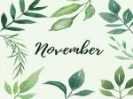 Important Days In November 2021 : ನವೆಂಬರ್ ತಿಂಗಳಿನಲ್ಲಿ ಯಾವೆಲ್ಲಾ ಪ್ರಮುಖ ದಿನಗಳಿವೆ ?