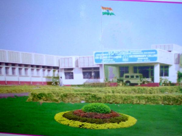 2 ವರ್ಷಗಳ ಪಶುಸಂಗೋಪನಾ ಡಿಪ್ಲೊಮಾಗೆ ಅರ್ಜಿ ಆಹ್ವಾನ