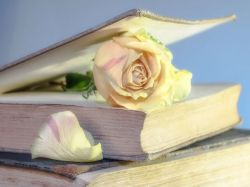 You Must Read This Books Before Turn