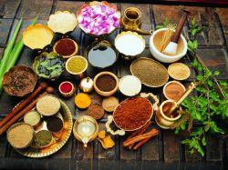 Ayurveda Scope And Career Opportunities