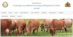 Commissionerate Of Animal Husbandry And Veterinary Services Recruitment 2020 For 61 Posts
