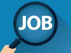 Kapl Recruitment 2020 For 8 Management Trainee Posts