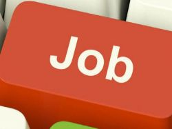 Regional Commissioner Office Belagavi Recruitment 2021 For Assistant Programmer Posts