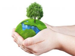 World Environment Day Speech Ideas For Students And Children In Kannada