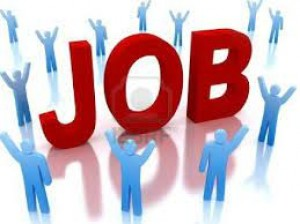 Bengaluru Smart City Limited Recruitment 2021 For 6 Chief Data Operator And Assistant Posts