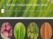 ಆರ್ಸಿಎಫ್ ನೇಮಕಾತಿ 50 ಆಪರೇಟರ್ ಟ್ರೈನಿ ಹುದ್ದೆಗಳಿಗೆ ಅರ್ಜಿ ಆಹ್ವಾನ